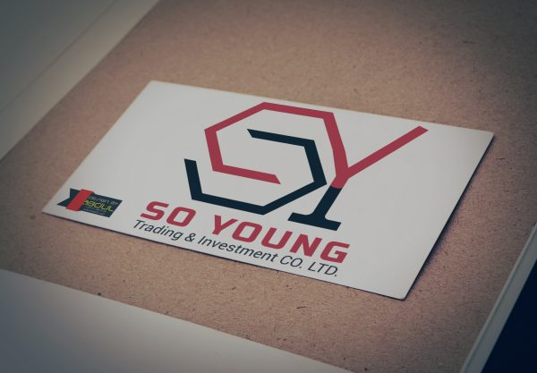 SO YOUNG TRADING & INVESTMENT CO. LTD